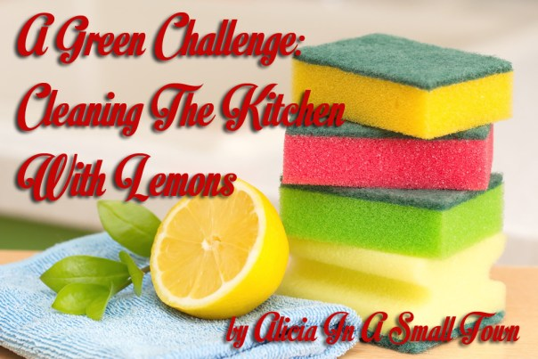 Cleaning The Kitchen With Lemons copy