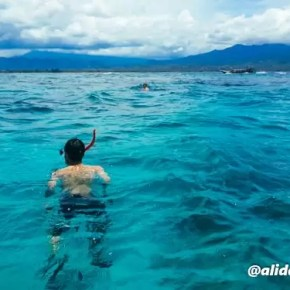 Alid Snorkeling Gili Trawangan 5