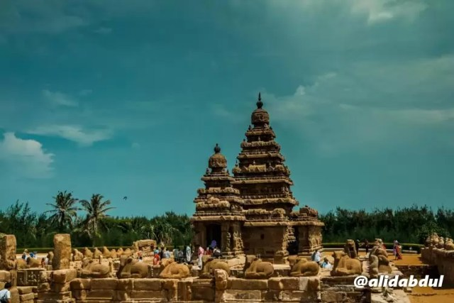 shore-temple-alid-2.jpg.jpeg