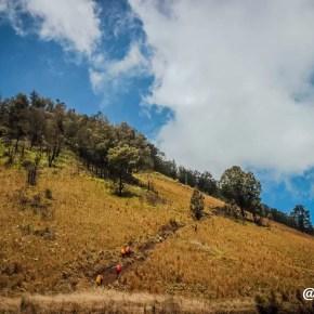 Pendakian ke Ranu Kumbolo 17