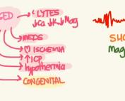 Prolonged QTc Magnesium