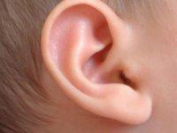 Ear pediatric