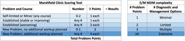 marshfield-scoring-mdm-em-level