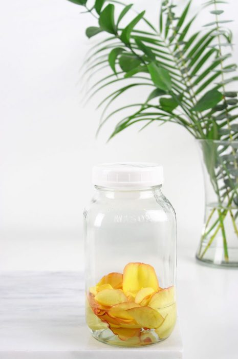Rose petals infusing in vodka to use in all-natural cleaning spray