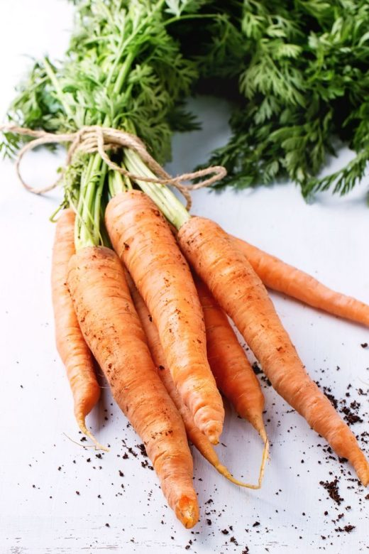 Raw carrots have well-documented antifungal and antibacterial properties. This can be especially useful for conditions with a bacterial component, such as IBS and SIBO (small intestinal bacterial overgrowth). Raw carrots, Dr. Ray Peat, Ray Peat, Carrot Salad, Endotoxin, Endotoxins, Lipopolysaccharide, LPS, Lipopolysaccharides, Estrogen, Inflammation, Progesterone. Photo © Natasha Breen