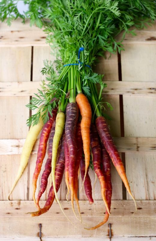 Raw carrots have unique health benefits that make them far more than just another vegetable. Raw carrots, Dr. Ray Peat, Ray Peat, Carrot Salad, Endotoxin, Endotoxins, Lipopolysaccharide, LPS, Lipopolysaccharides, Estrogen, Inflammation, Progesterone.
