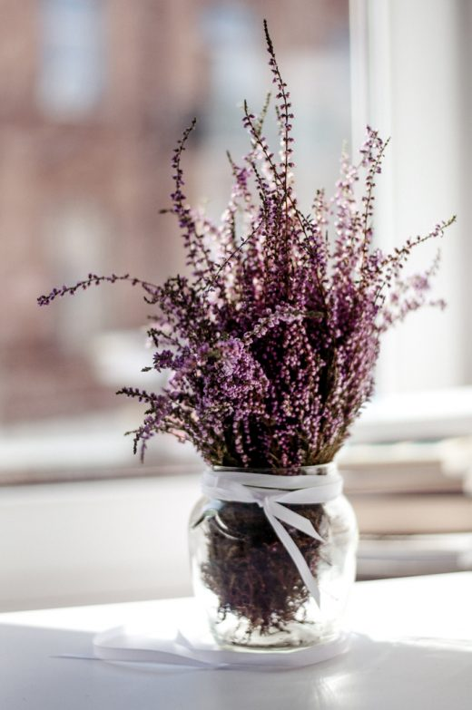 Vase full of beautiful lavender buds