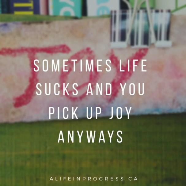pick up joy anyways