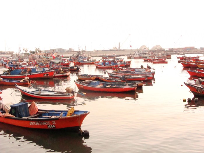Fishing port in Iquique, Chile
