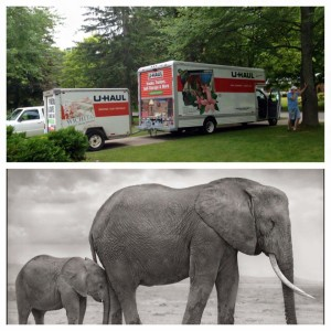 uhaul and elephants