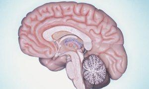 zihin gücünü kullanma
