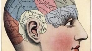 bellek-nedir-bilimsel bellek ve ansıma Bellek Ve Ansıma bellek nedir bilimsel