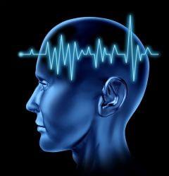 beynin-calisma-sistemi