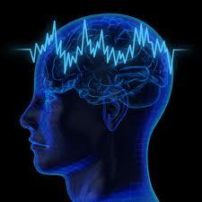 nlp ile yetenekler NLP İle Doğal Yeteneklerinizi Kullanın NLP İle Doğal Yeteneklerinizi Kullanın images 2