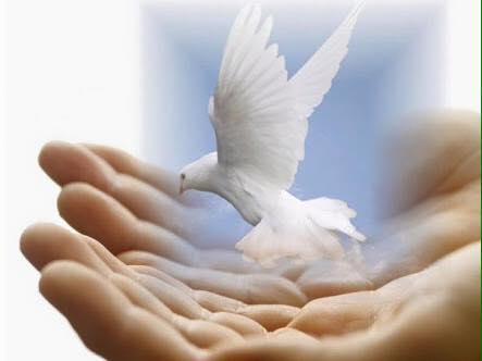 1-eylul-dunya-baris-gunu  1 Eylül Dünya Barış Günümüz Kutlu Olsun 1 eylul dunya baris gunu