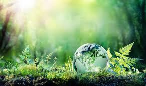 """Etichettatura ambientale degli imballaggi, identificazione e classificazione: obbligo dei produttori. Il D. Lgs. n.116/2020 e la """"sospensione parziale"""""""