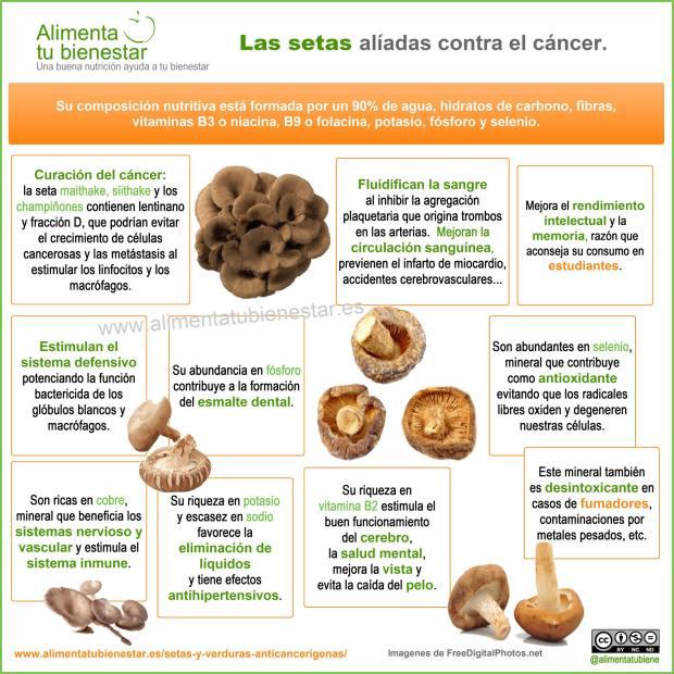 Infografía Propiedades saludables de las setas