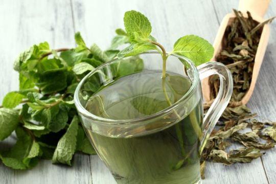 Propiedades beneficiosas del te verde para la salud