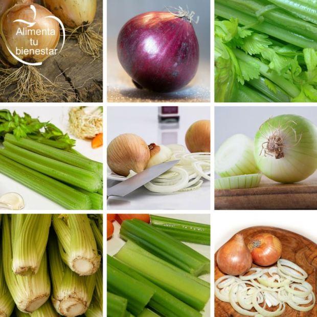 mejores alimentos depurativos, el apio y la cebolla
