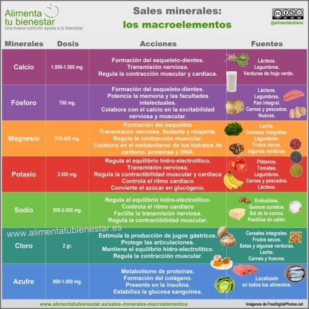 Infografía sales minerales macroelementos: calcio, fósforo, magnesio, potasio, sodio, cloro y azufre
