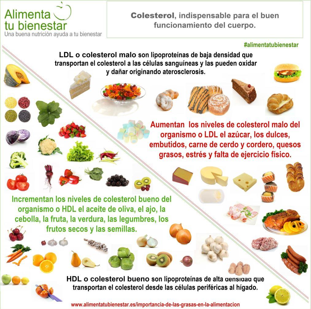 Grasas en la alimentación Colesterol