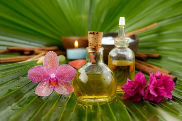 Diferencias entre vaporizador y humidificador. Plantas aromáticas