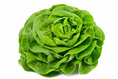 Las mejores hortalizas verdes para ensaladas - lechuga