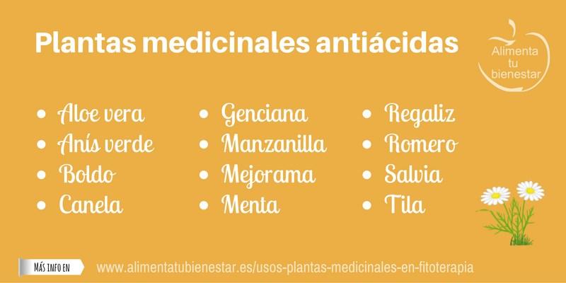 Plantas medicinales antiácidas