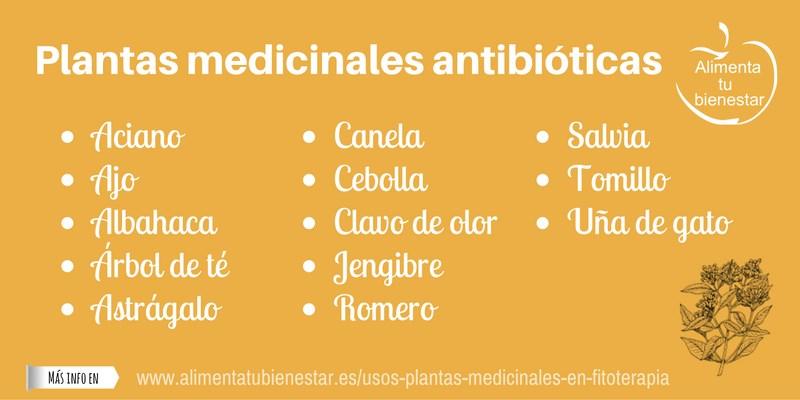 Plantas medicinales antibióticas