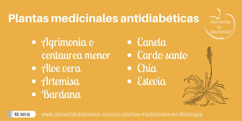 Plantas medicinales antidiabéticas