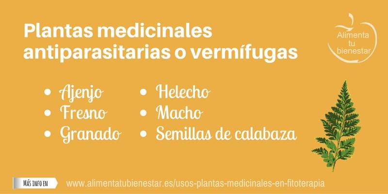 Plantas medicinales antiparasitarias o vermífugas