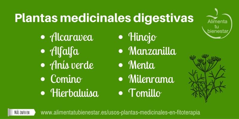 Plantas medicinales digestivas