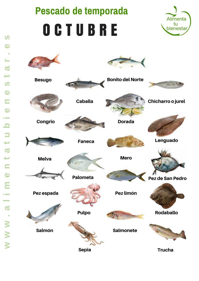 Pescado De Temporada  Descarga El Calendario Para Todo El A U00f1o