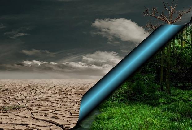 El calentamiento global y sus efectos perniciosos sobre la salud
