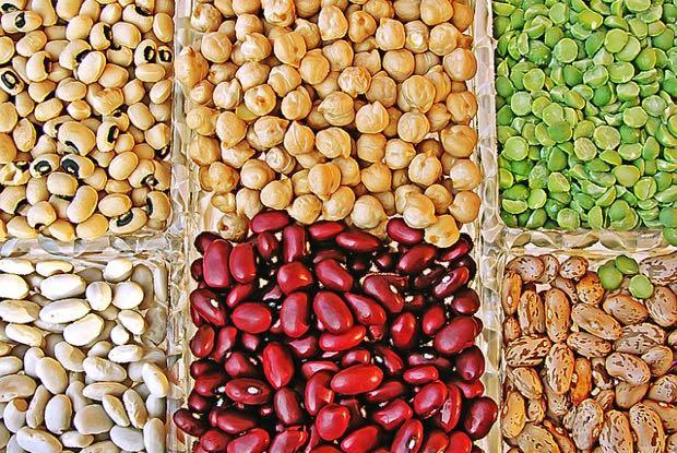 tipos y variedades de legumbres
