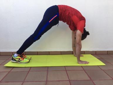 movilidad artícular: Cervicales + sóleo + isquiotibiales