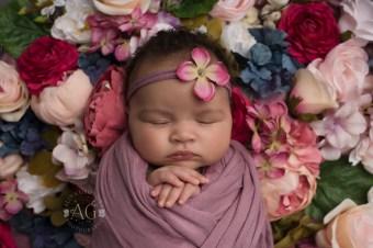 Dallas Newborn Photographer Baby Gigi 1