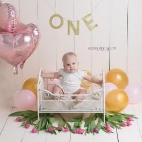 Plano-Newborn-Photographer-Baby-First-Birthday-1