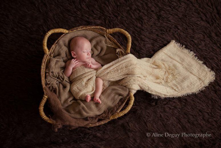 photographe bébé, anne geddes, nouveau-né, studio