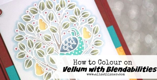 Colour Vellum with Blendabilities