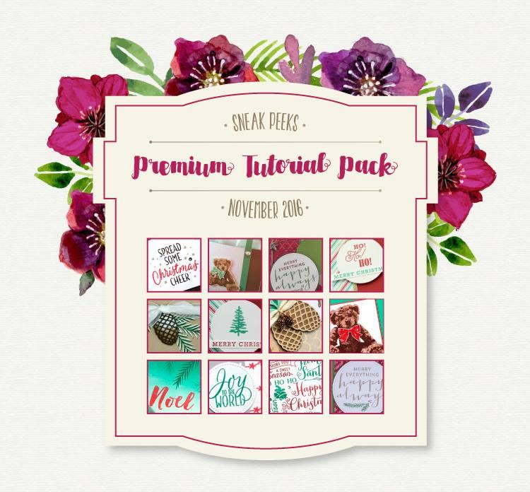 Premium Tutorial Pack