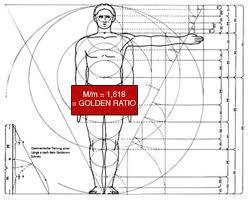 Golden-Ratio-Tubuh-Manusia