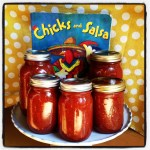 Chicks and Salsa: A Children's Book + A Recipe for Salsa