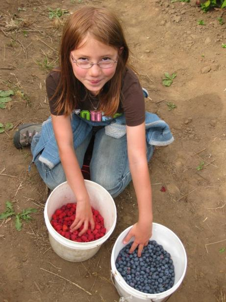 Berry Picking in the Pacific Northwest, Family Vacation, Fun Family Outings
