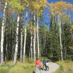 Banff Hiking Trails: C Level Cirque