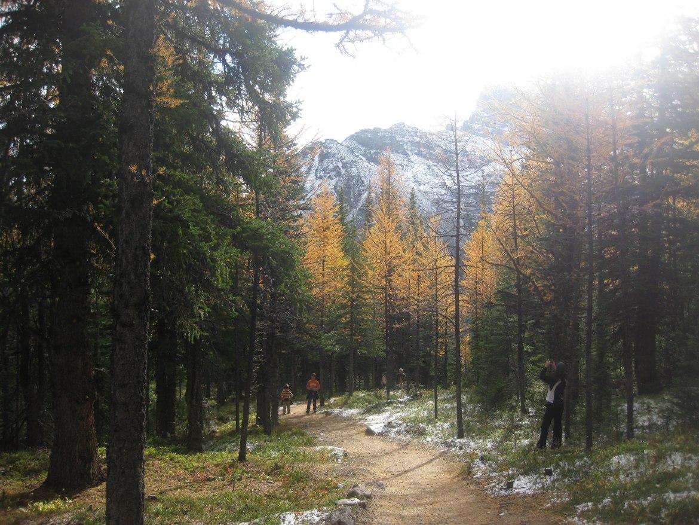 Banff Day 5 (23)
