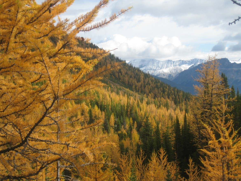 Banff Day 5 (30)