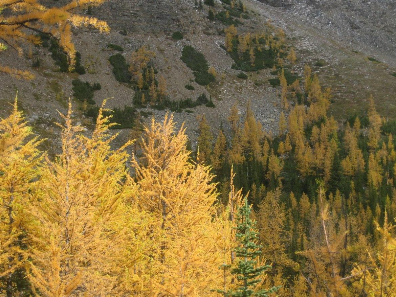 Banff Day 5 (31)