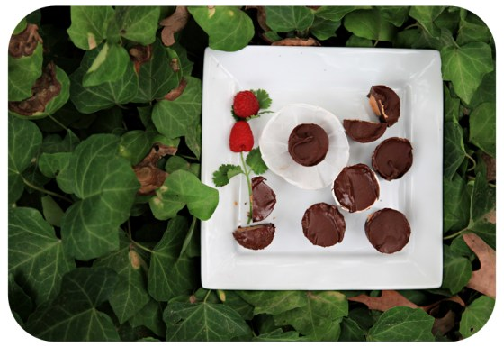 delish!, yummy chocolate dessert, fun project with kids