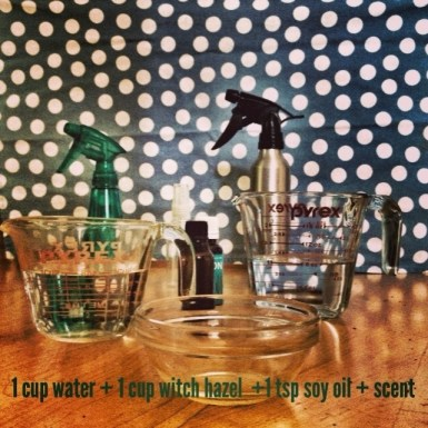 Homemade Insect Repellent, #soy, #Bean2Blog, Natural Remedies